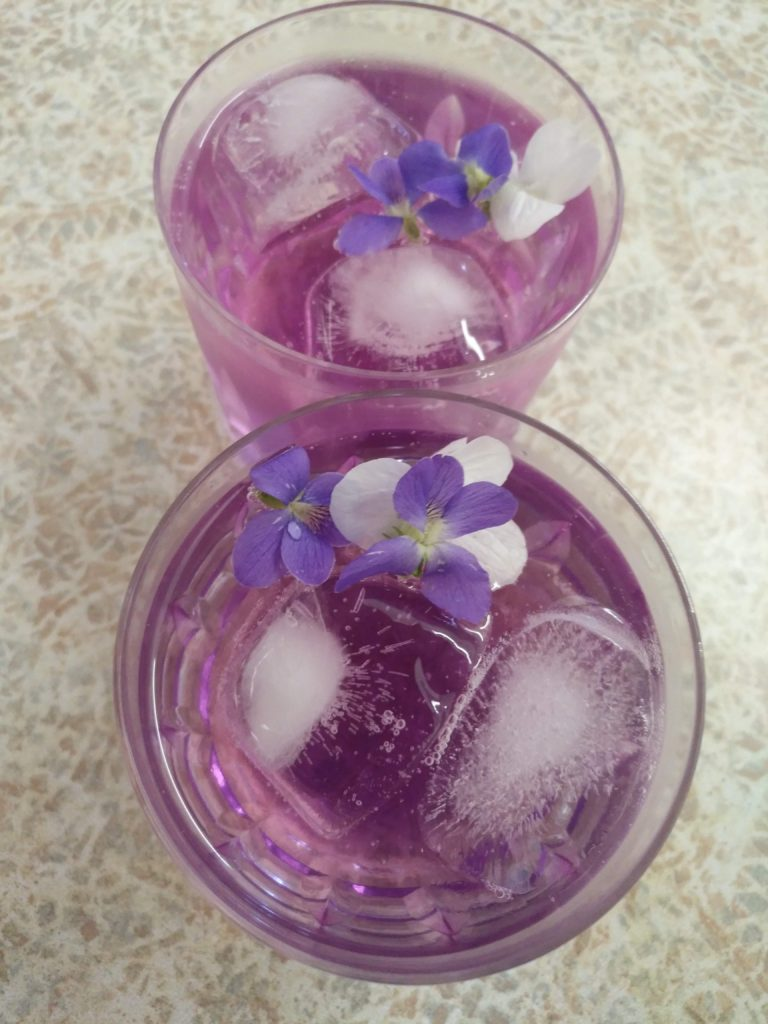 violet gin and tonics