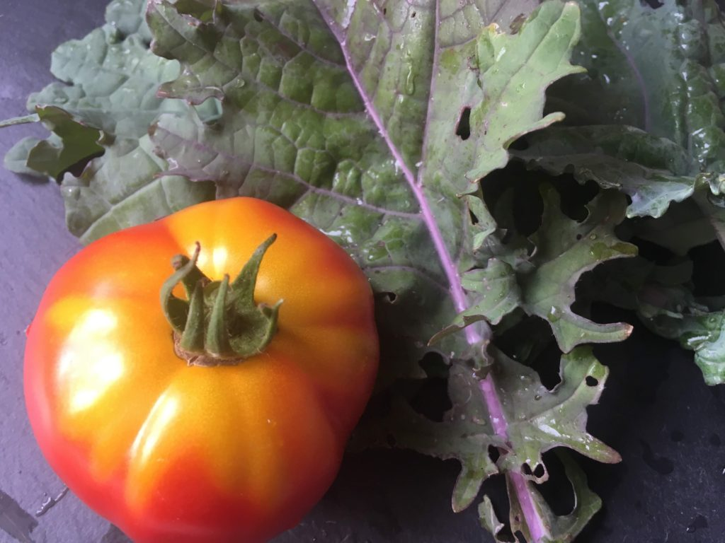 tomato and kale