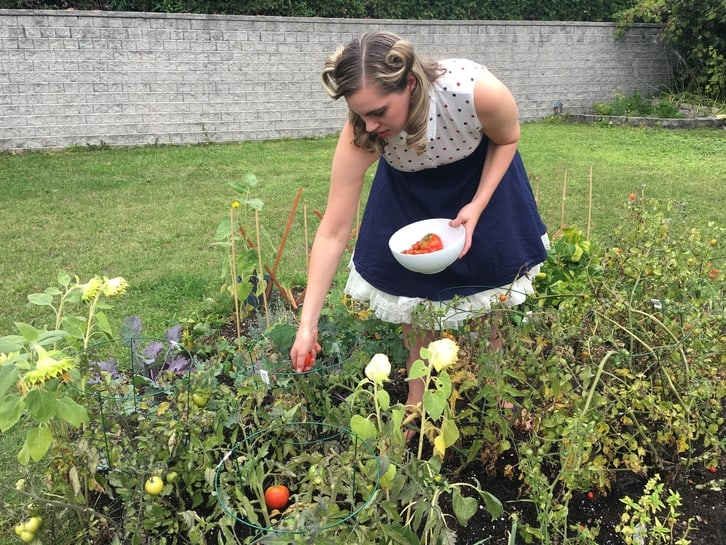preserving food from the garden