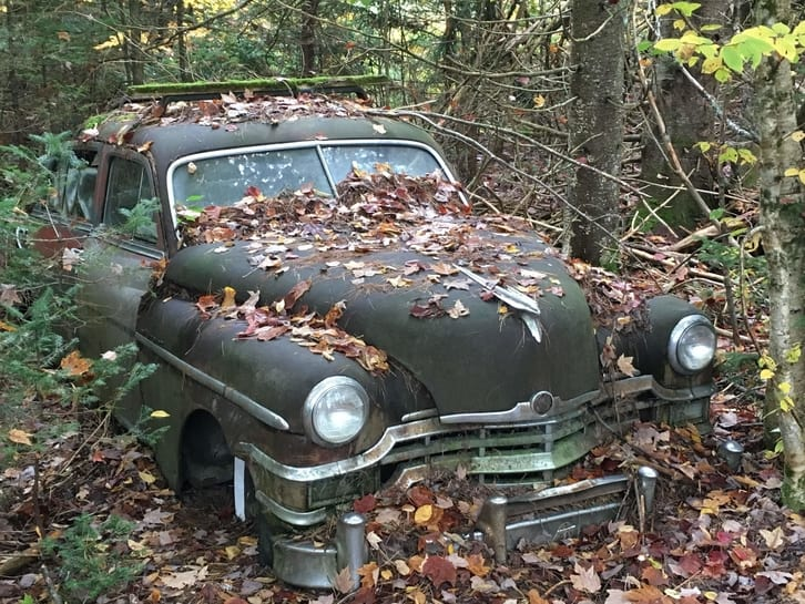 abandoned vintage car covered in leaves