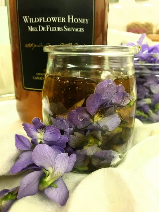 why everyone should forage wild violet honey