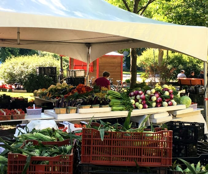 sourcing food at farmer's markets